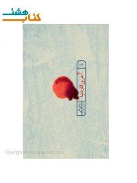 کتاب رمان آخرین انار دنیا